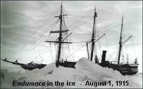 The Endurance in Ice