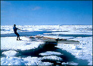 crossing ice, Beaufort Sea